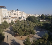 Renovated  4 Room Apartment for Sale, Maalot Dafna, Jerusalem